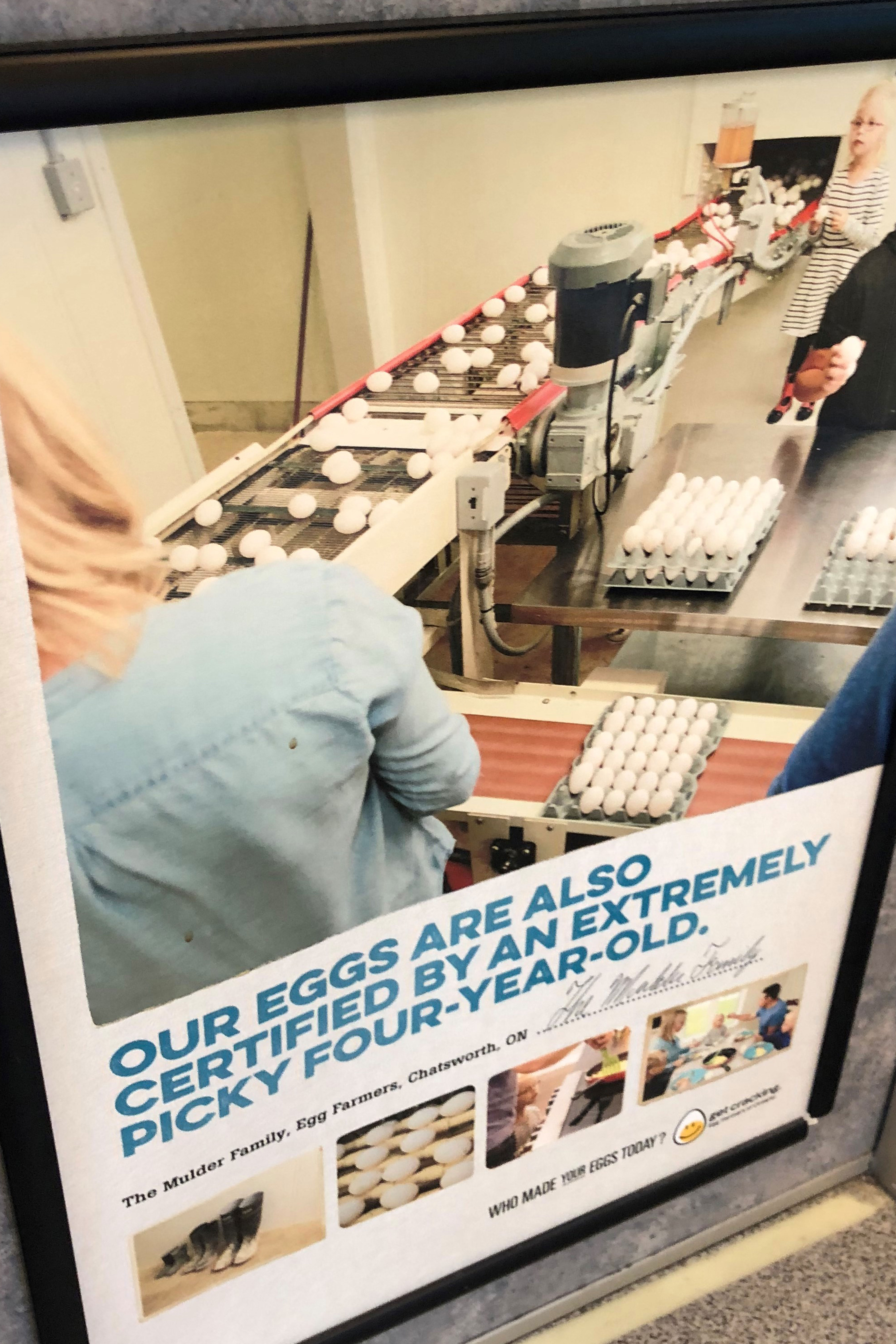 Egg Farmers of Ontario who made your eggs today campaign